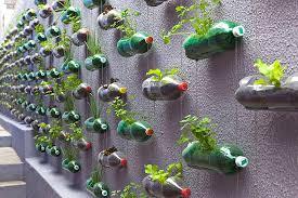 vertical gardens rosenbaum creates a sprawling vertical garden from hundreds of