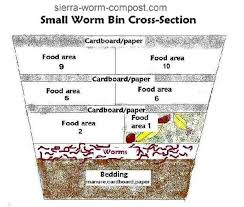 How To Make A Paper Worm - building a worm bin
