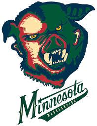 Minnesota wild animals images What animal is the minnesota wild logo hockey png