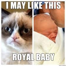 New Grumpy Cat Meme - 8 new grumpy cat memes