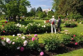 fleurs vivaces rustiques destinations jardins u2013 garden promenade
