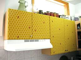 Yellow Kitchen Cabinet How To Cover Kitchen Cabinets Faced
