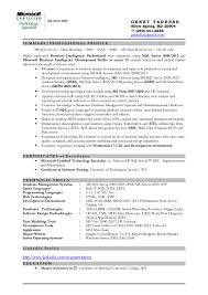 Business Systems Analyst Resume Sample by Bi Developer Resume Resume For Your Job Application