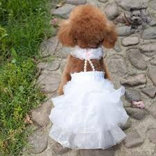 dog wedding dress pet dog ruffled dress puppy luxury party wedding dresses