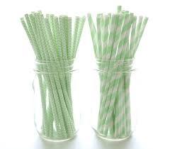 Mint Green Vase Amazon Com Mint Green Paper Straws Fun Birthday Party Straws