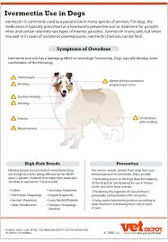 ivermectin dosage for dogs ear mites ortho tri cyclen without