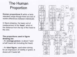 figure drawing proportion and construction