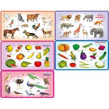 creative u0027s play u0026 learn combo wild animals domestic animals