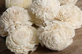 sola flowers sola flowers 2 2 5 white chorki 12 flowers sola flowers