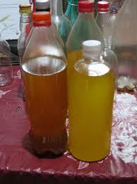 huile d argan cuisine l huile d argan au maroc la terre est un jardin