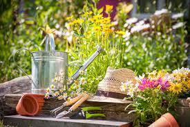 cura giardino 10 consigli per il giardinaggio casalingo dolcevita