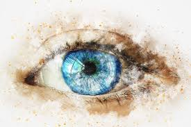 Eyes Are Sensitive To Light 10 Incredible Facts About The Human Eye Denise U0027s Planet