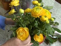 real flowers budget friendly flower arrangements hgtv