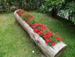 imagenes de jardines pequeños con flores decoración de jardines fotos de ideas decorativas con plantas y