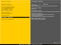 install windows 10 esxi 5 5 configuring vmware esxi 5 sysadmintutorials it technology blog