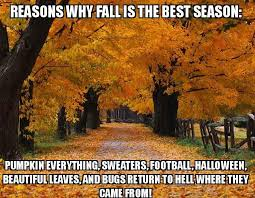 Autumn Meme - 25 funny af fall memes wow gallery ebaum s world