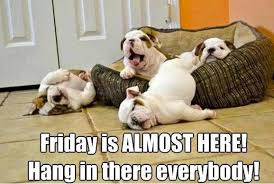Hang In There Meme - friday is almost here hang in there everyboday meme boomsbeat
