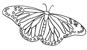 coloring page butterfly monarch monarch butterfly clipart coloring page pencil and in color