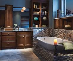 bathroom ideas pics bathroom ideas bath remodeling cement city mi