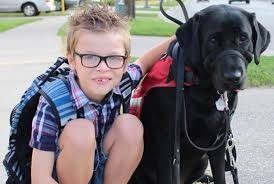 ontario family fights to have autistic son u0027s service dog in