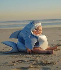 chambre bébé plage photo d un bébé déguisé en requin bébé et décoration chambre