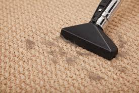 how to vacuum carpet see how much carpet damage vacuum cleaners can cause