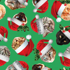 cat wrapping paper cat in hats 3m christmas roll wrapping paper