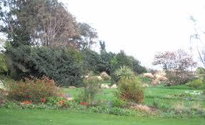 Barnhill Rock Garden Barnhill Rock Garden Dundee Parks Visitscotland