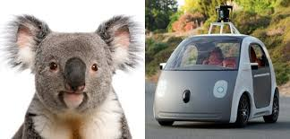 google images car totoro a koala and 11 other things google self driving car