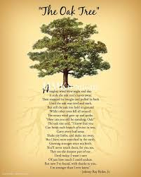 best 25 tree poem ideas on poetry inspiration quotes