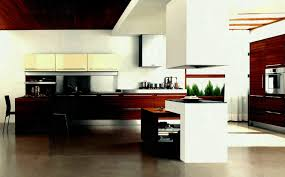 unique kitchen decor ideas unique kitchen cabinet home furniture ideas fabulous without