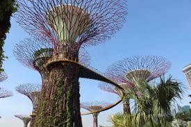 in singapore harbourfront garden pam klainer s day