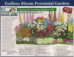 Butterfly Garden Layout by Perennial Bed Plan From Michigan Bulb Co West Garden Yard