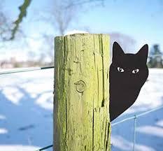 cat and bird yard garden lawn ornaments