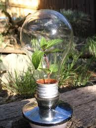 Cheap Energy Saver Light Bulbs Diy Impossible Light Bulb Plus 6 More Ways To Repurpose Burned