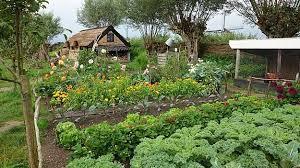 garden planning and design 157 practical tips tricks ideas