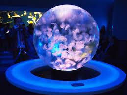 japanese aquarium jellyfish sphere in a japanese aquarium interestingasfuck