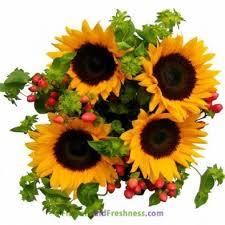 Sunflower Bouquets Sunflowers Bouquets Yellow Diy Wedding Bouquets