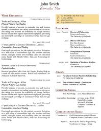excellent cv sample one page summary template