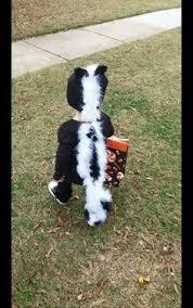 Baby Skunk Costume Halloween Valentine 80083 Deluxe Skunk Costume Corset U0026 Skirt Faux
