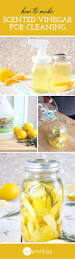 How To Clean A Laminate Floor Vinegar How To Make Scented Cleaning Vinegar Vinegar Cleaning And Natural