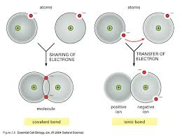 how does the formation of an ionic bond differ from that of a