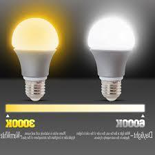 daylight led light bulbs awesome daylight light bulbs 1 full image for led light bulbs