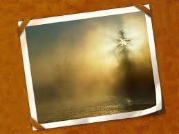 photo frame cards free thank you cards backgrounds for powerpoint miscellaneous