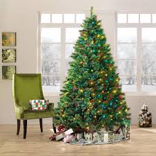 7 5ft pre lit ridgedale cashmere spruce christmas tree with multi