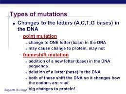 chromosome mutation worksheet free worksheets library download