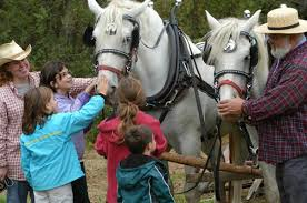 9 kid friendly fall festivals in montgomery county pa