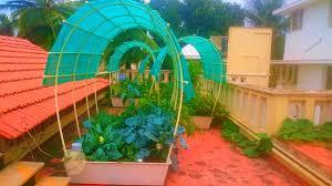 terrace gardening smart gardens complete kits for organic terrace kitchen garden in