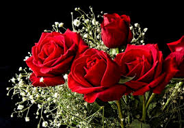 roses for valentines day it s time to start thinking beyond roses for s day