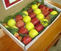 fruit gift boxes fruit baskets boyer nurseries and orchards inc